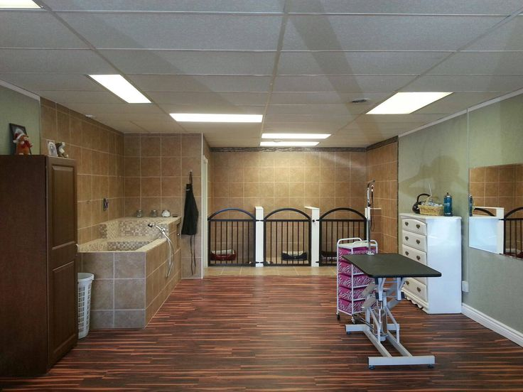 Repinned grooming shop layout business ideas pinterest for Building a dog kennel business