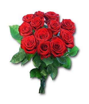valentine's day roses sale