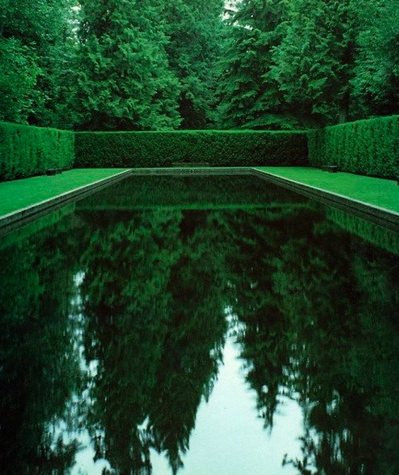 The Most Beautiful Swimming Pool Poolside Pinterest