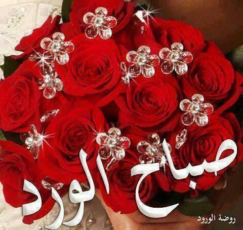 Pin by Doaa Nasser on ARABIC: Good Morning ☀صباح الخير ...