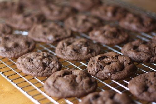 double chocolate peppermint cookies | food FoOd FOOD | Pinterest