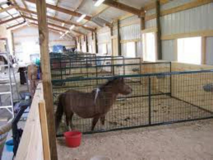 Mini horse stalls living in the country pinterest for 1 stall horse barn