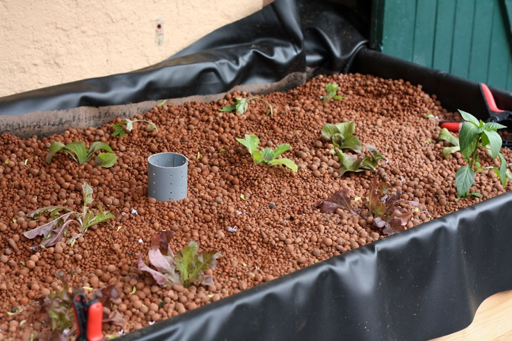 Jerry how to build aquaponics grow bed for Aquaponics grow bed