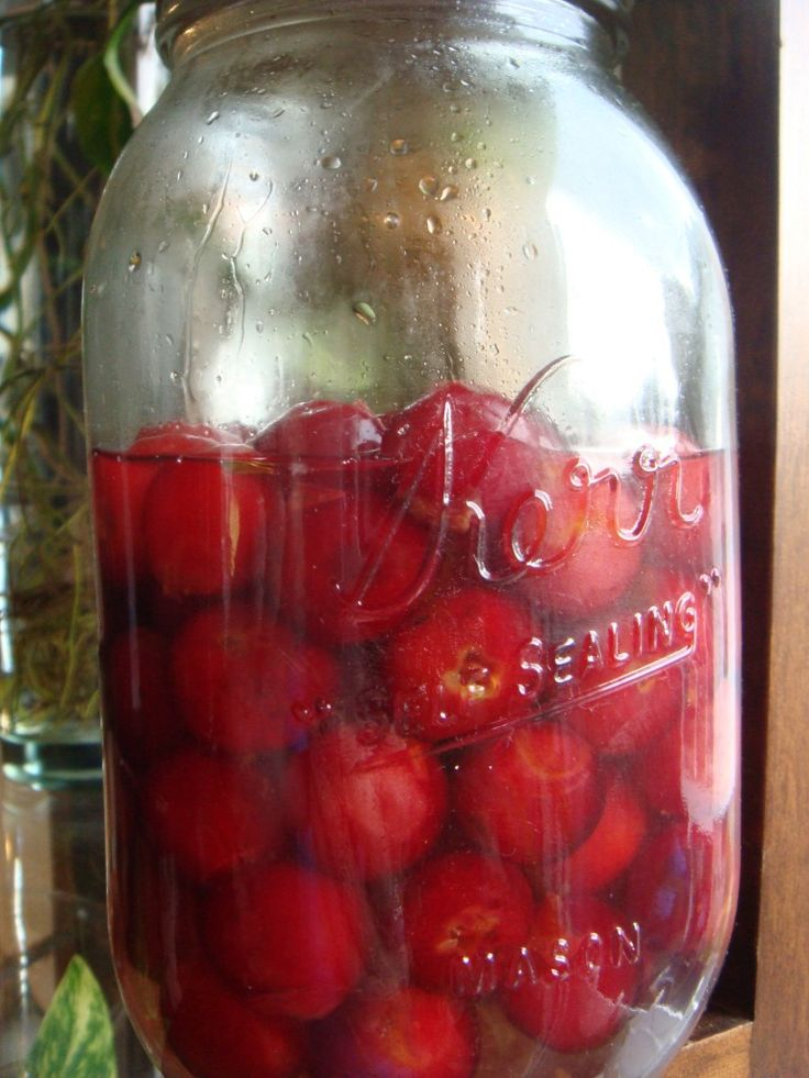 Homemade Maraschino Cherries - Don't Put Any Old Cherry On Top Recipe ...