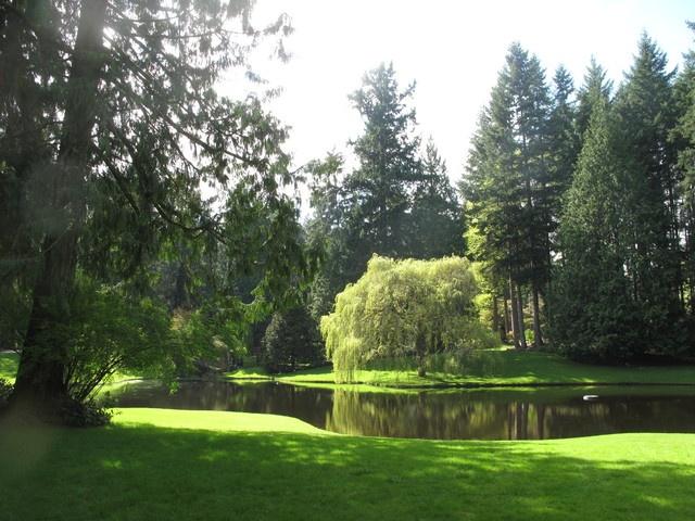 A most beautiful tranquil garden gardens and gardening for Tranquil garden designs