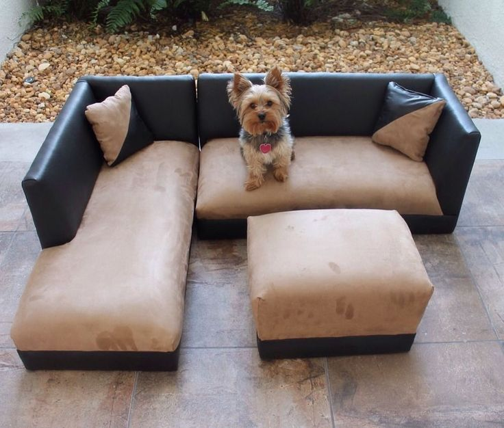 Modern Toddler Dog Sofa Tan Bed Ottoman Pet Couch Princess
