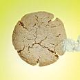Triple-Ginger Cookies | Recipe