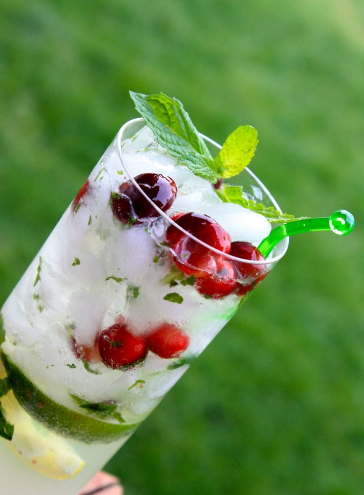 Cranberry Mojito - replace the sugar in mojitos with honey for a ...
