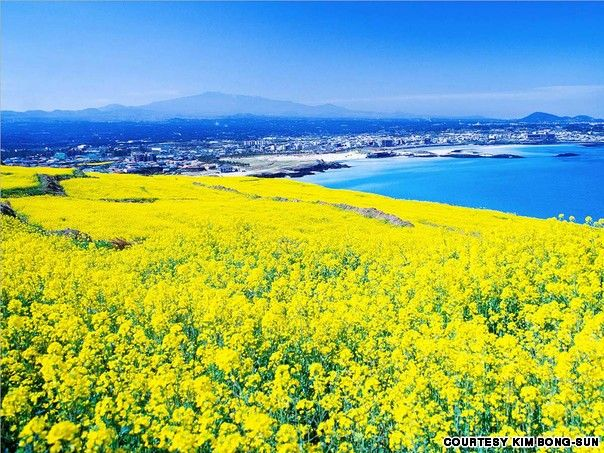 Gallery 40 Most Beautiful Places In South Korea