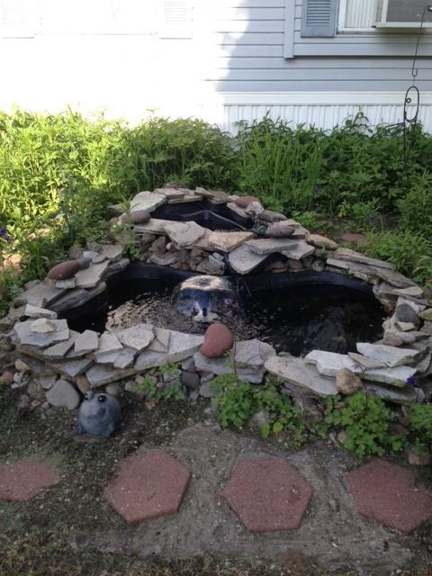 homemade garden pond gardens pinterest