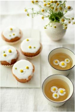 chamomile tea and daisies <3