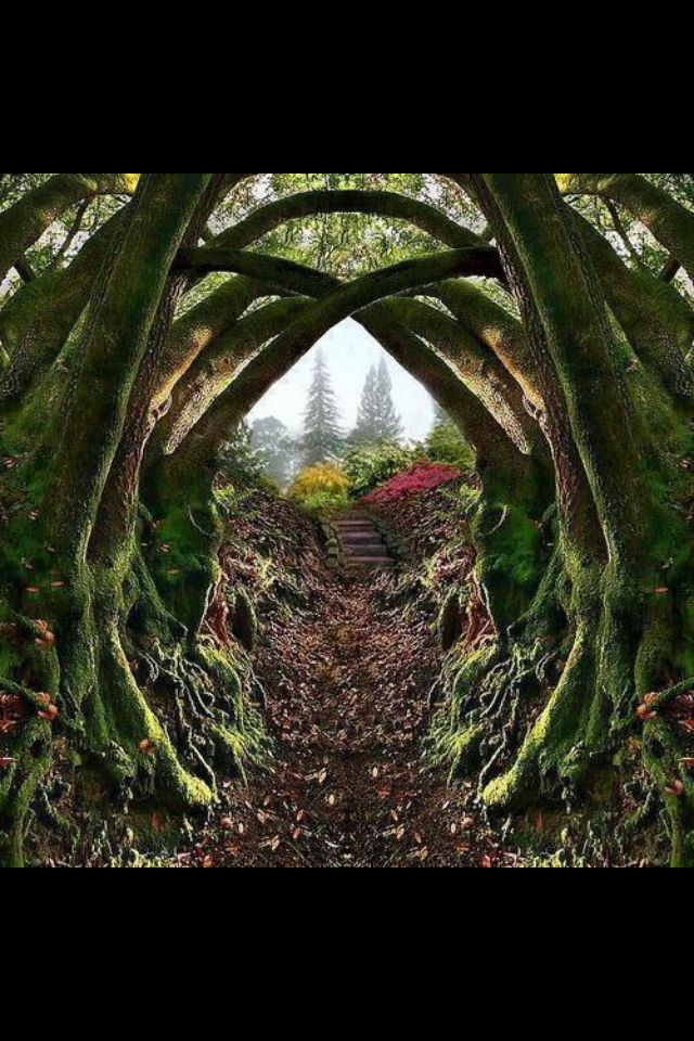 Pin by Peter Erbenich on Pathways doorways and gates