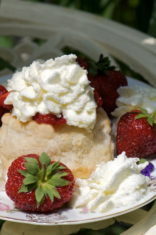 Old-Fashioned Strawberry Shortcake | Eating this... | Pinterest
