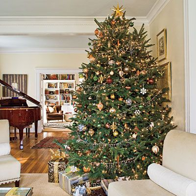 Our favorite christmas trees - Christmas tree color schemes ...