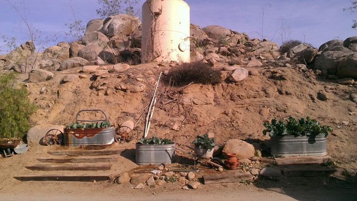 ... old livestock water containers | Above ground gardening | Pinte