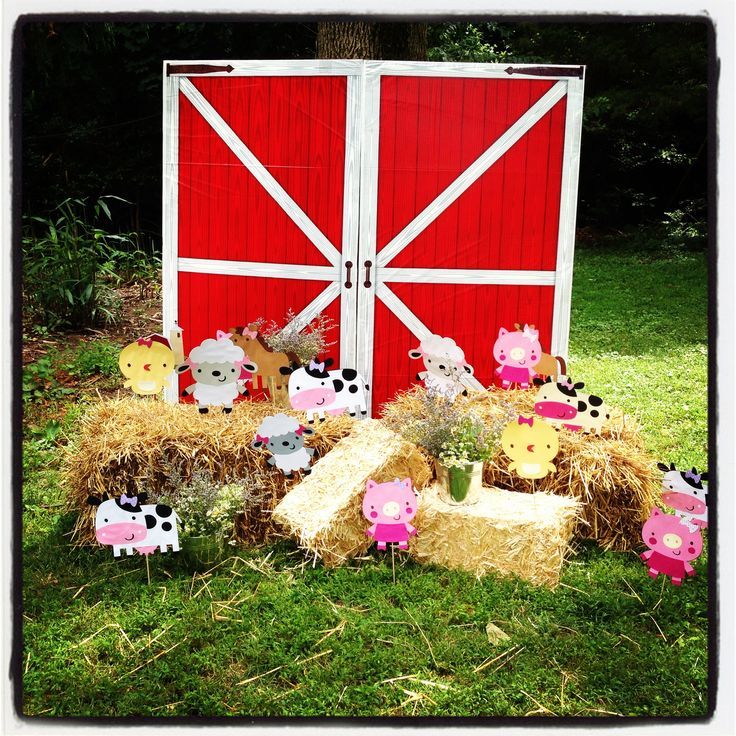 Barnyard Party Decorations Birthday Party Ideas Pinterest