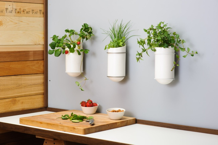 Self Watering Planters Vases For The Home Pinterest