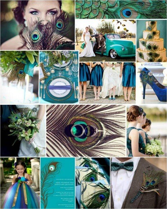 Peacock Themed Wedding Wedding Shenanigans Pinterest