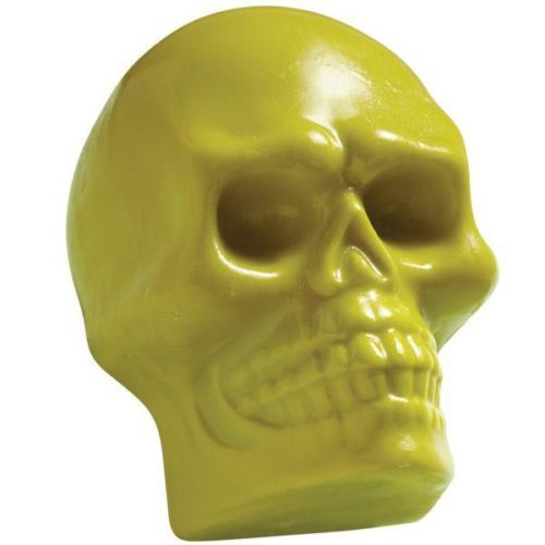 how to clean a skull of mold