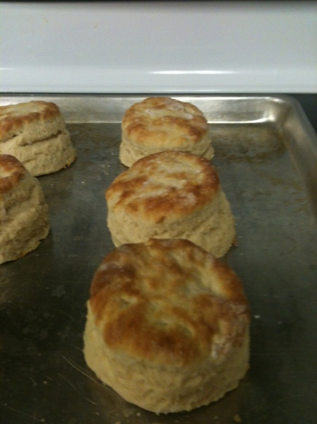 Pin by Brenda Jordan on Southern Biscuits | Pinterest
