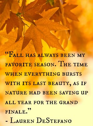 """Fall has always been my favorite season. The time when everything bursts with its last beauty, as if nature had been saving up all year for the grand finale."" -Lauren DeStefano 