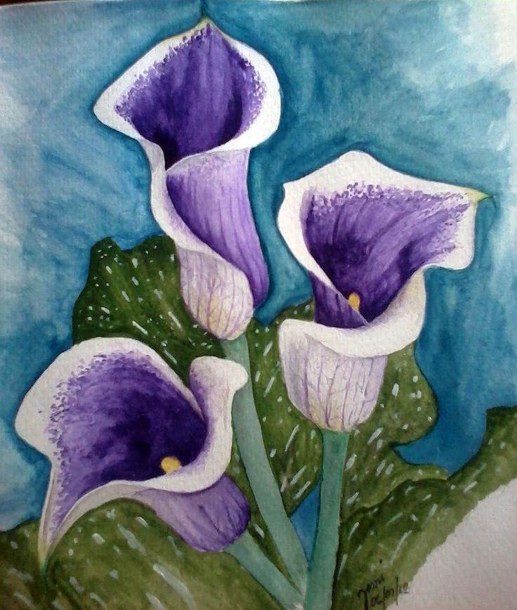 calla lily watercolor watercolor and drawing