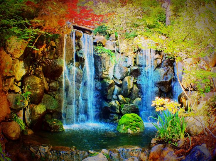 Pin By Sharon Holmin On Anderson Japanese Garden Pinterest