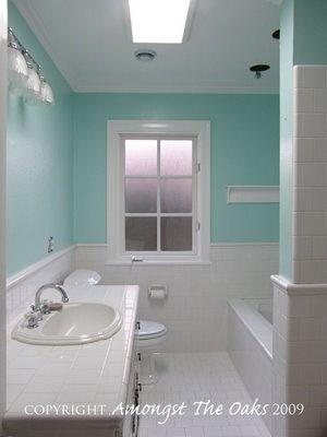 Tiffany Blue Bathroom Designs : paint for bathroom? tiffany blue :)  home decor ideas  Pinterest