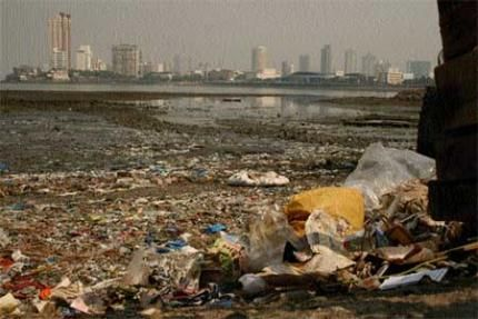 water pollution in india essay in english
