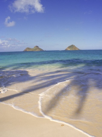 Lanikai Beach, Kailua, Oahu  Going for my son's wedding May, 2014   Can't wait!!