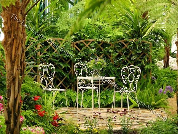 Small Tropical Garden Patio