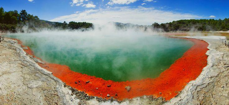 Geothermal springs in Rotorua, New Zealand.