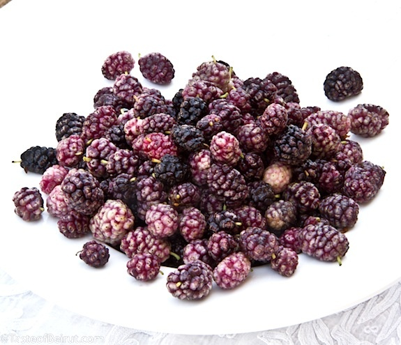 More like this: mulberry jam , mulberry and jams .