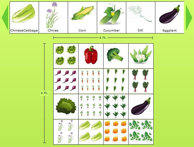 4x4 sample vegetable garden plan in the garden fruit for Planning a fruit and vegetable garden