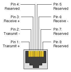 leviton voice grade jack wiring diagram images leviton cat 5 voice jack wiring voice a guide wiring diagram images