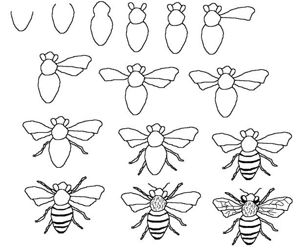 Simple bee drawing - photo#27