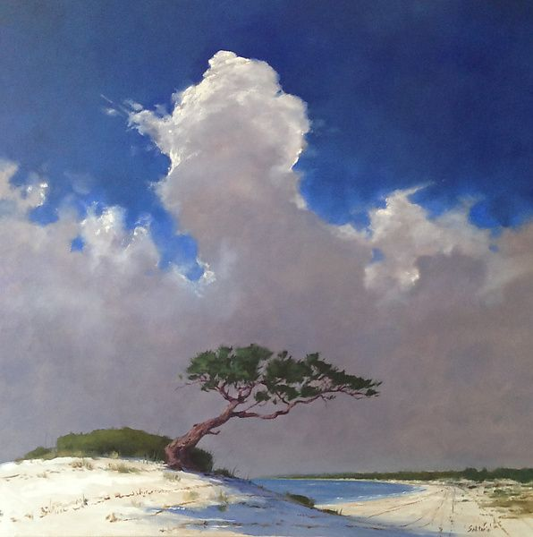 Wind swept pine tree and cloud by billy solitario oil painting