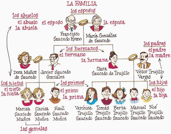 Lxico de la familia Relaciones personales y familiares  ProfeVio