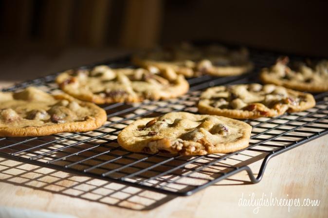 Chocolate Chip Spiced Walnut Cookies (Munchie Monday #9) | Recipe