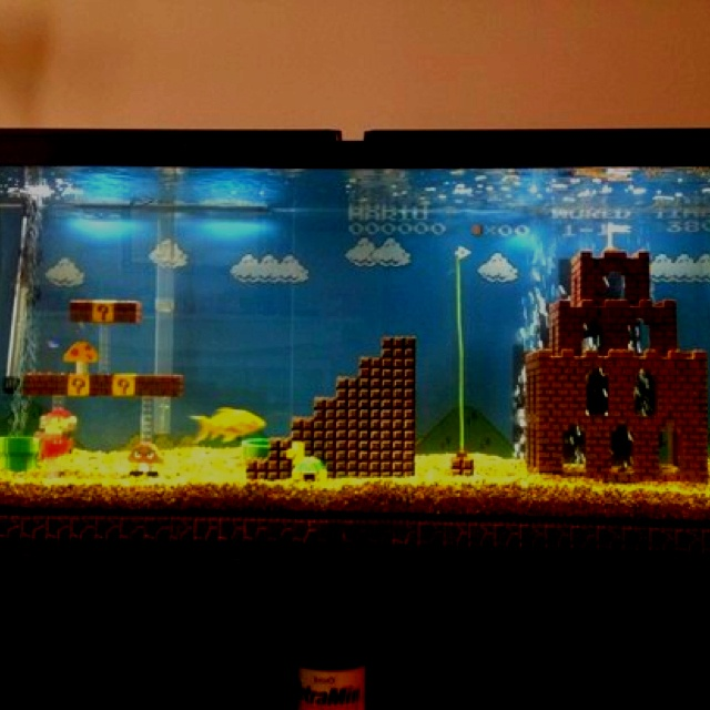 Super mario fish tank my style pinterest for Mario fish tank
