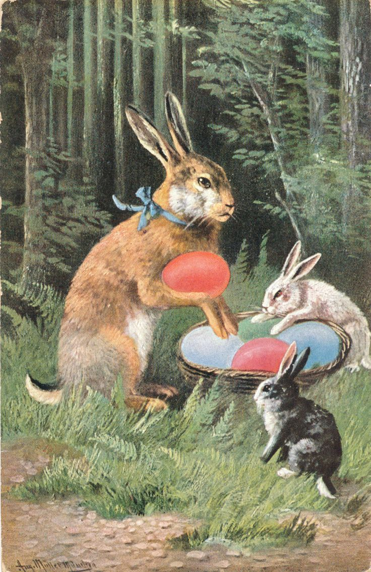 Easter Bunny | Victorian Greeting Cards | Pinterest: pinterest.com/pin/438608451180386401
