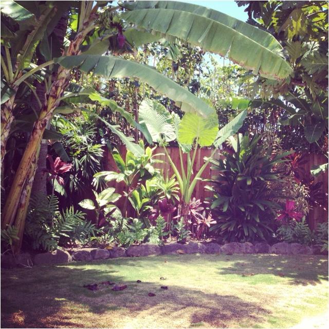 Hawaiian Backyard Decor : Tropical Yard  Bamboo Decor  Pinterest