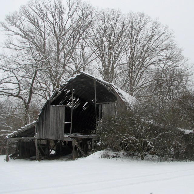 Our old barn, Horse Shoe, NC
