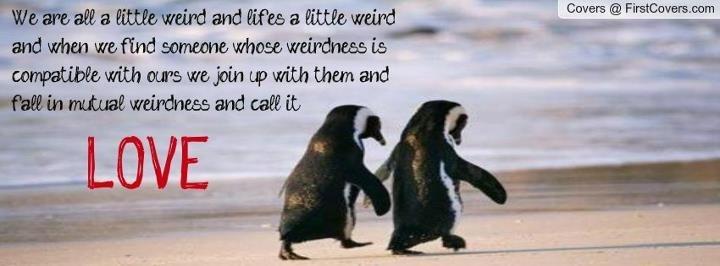 Penguin Love Quotes Magnificent Penguin Love Quotes