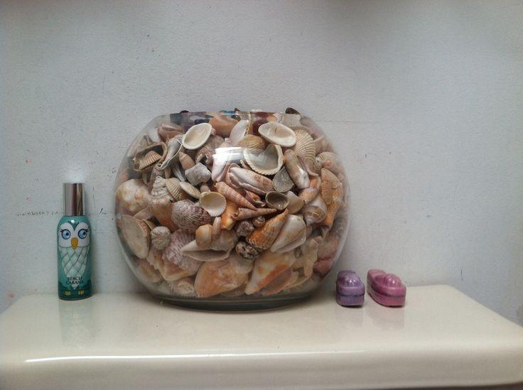 Seashell decor for bathroom beach seashells pinterest for Seashell bathroom accessories