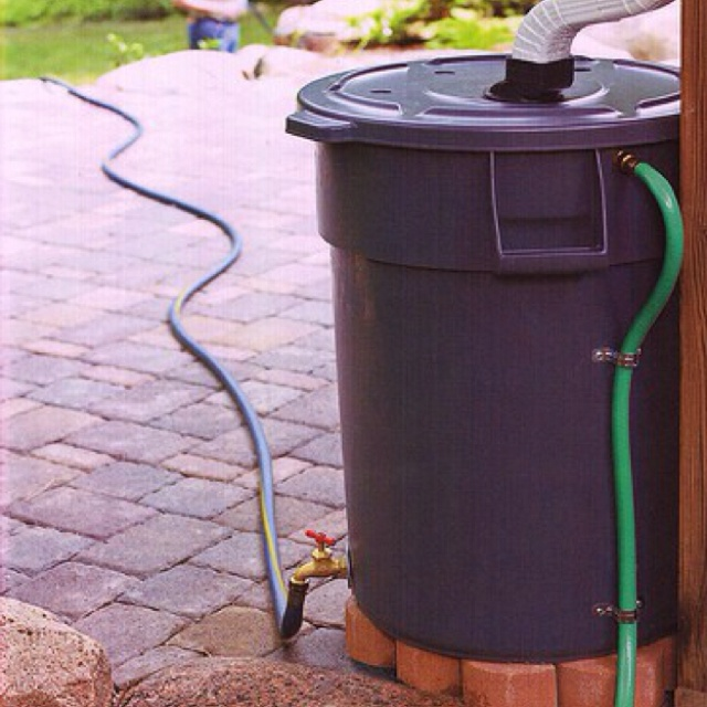 Rain barrel.....saves on your water bill & better for your flowers ...