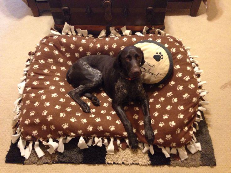 Homemade dog bed pets pinterest for Homemade pet beds
