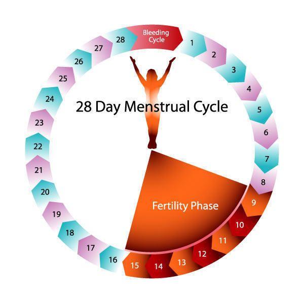 ... cervical mucus method 3. Symptothermal method 4. Calendar method 5