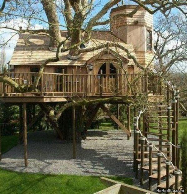 Tree House Cool Unique Living Pinterest