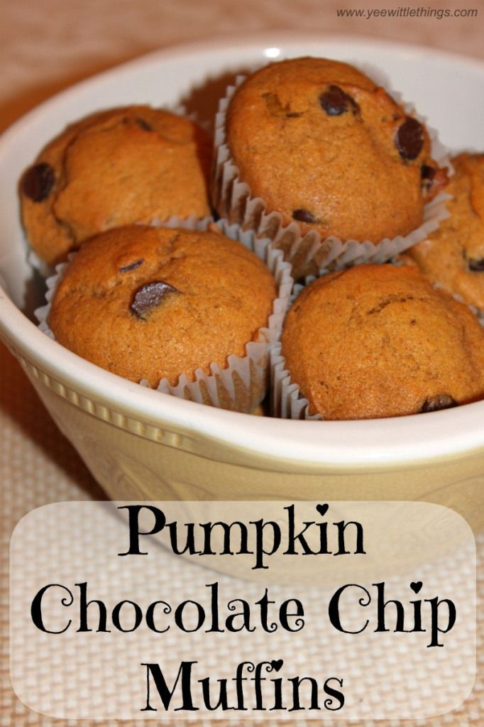 Pumpkin Chocolate Chip Muffins - Yee Wittle Things